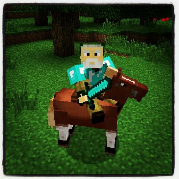 horse_jeb